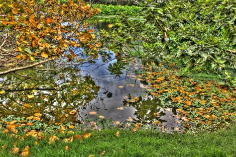 20121216_22_3_4_tonemapped (Large)