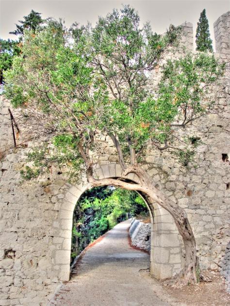 alleys of croatia (4)