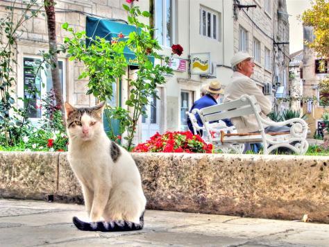 croatia on the street (7)