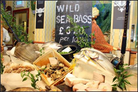 seafood (3) (Large)