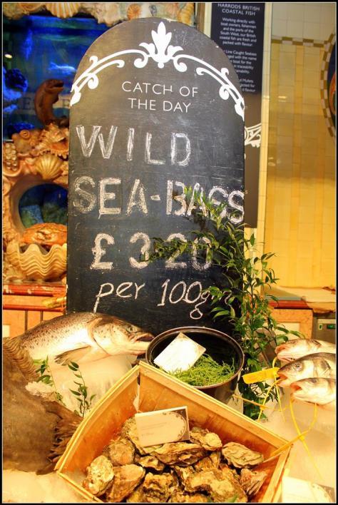 seafood (4) (Large)