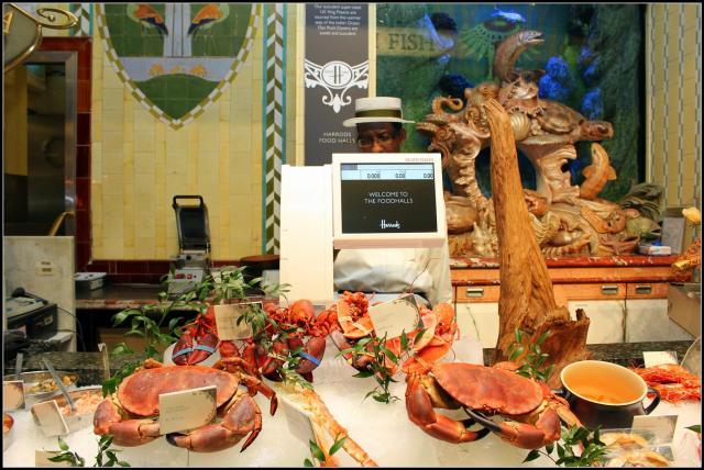 seafood (7) (Large)