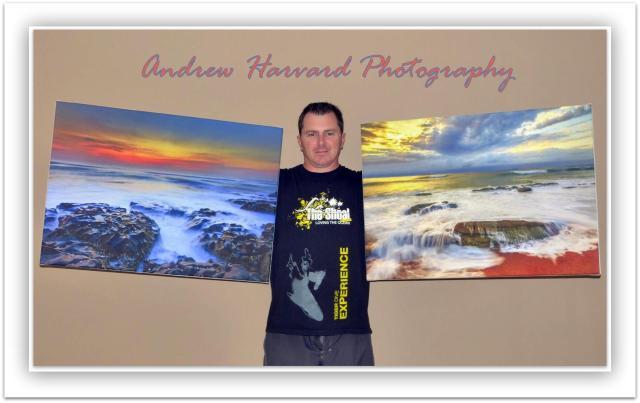 Allan prints Dec 2013 (Large)