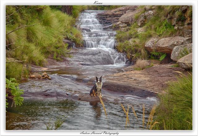 Karoo (Large)
