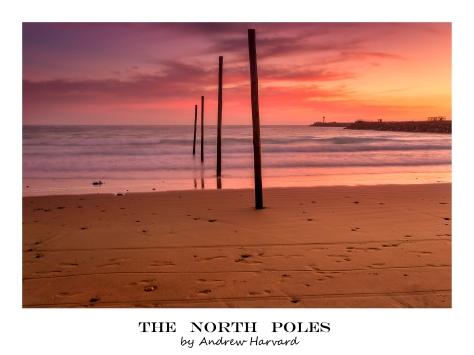 North Poles