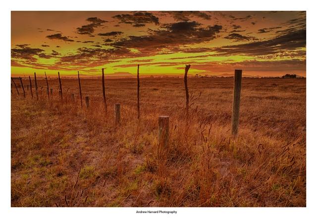 Stellenbosch Sunset