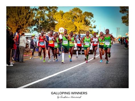 Galloping Winners