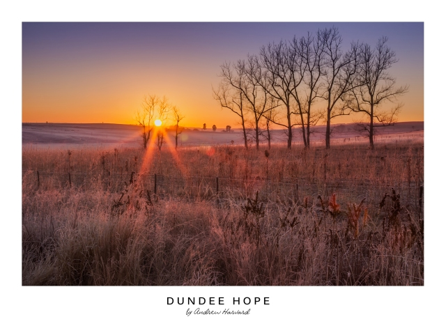 Dundee Hope