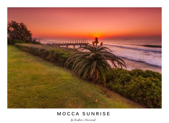 Mocca Sunrise