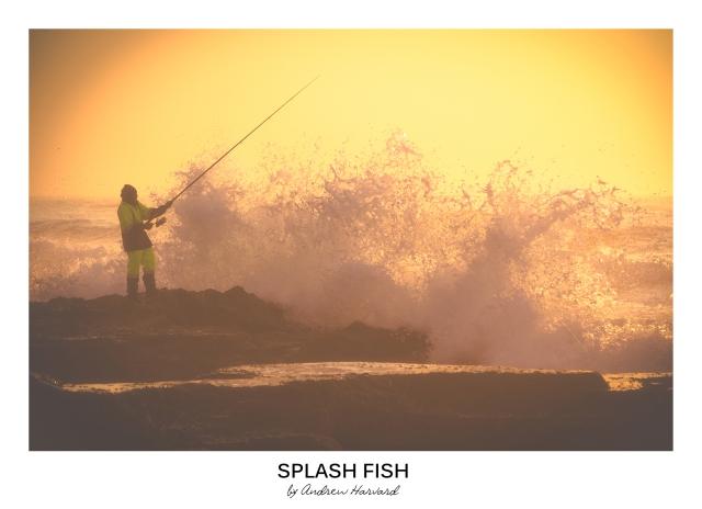 Splash Fish