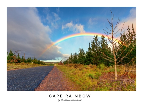 Cape Rainbow