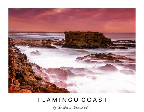 Flamingo Coast_V2