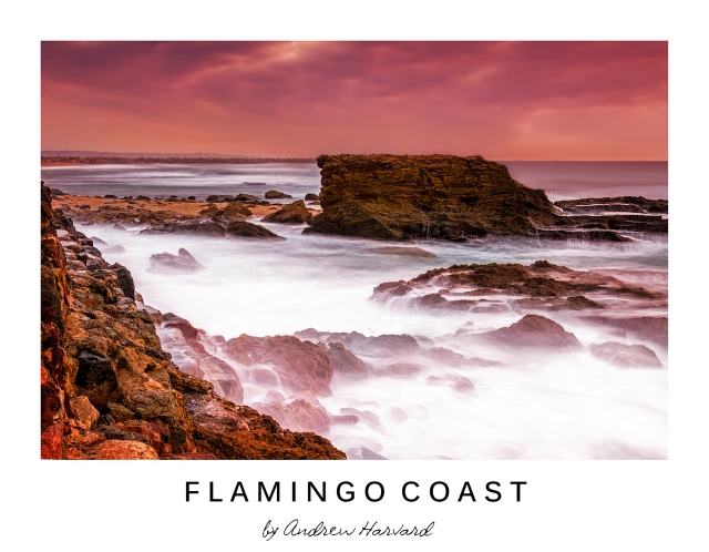Flamingo Coast_V2