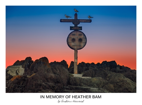 In Memory of Heather Bam