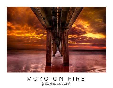 Moyo on Fire