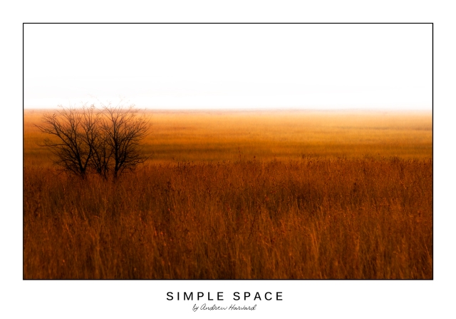 Simple-Space