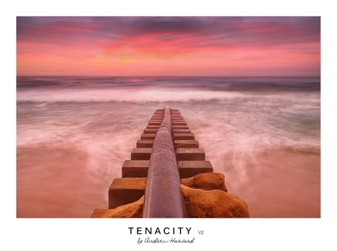 Tenacity V2