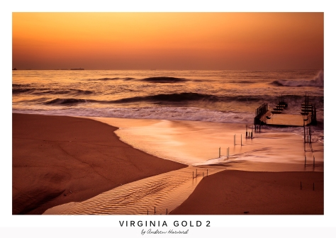 Virginia Gold 2