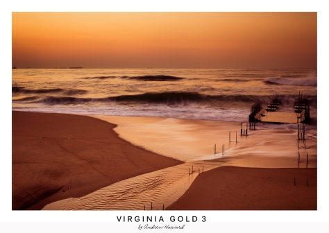 Virginia Gold 3