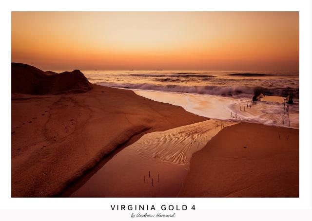 Virginia Gold 4