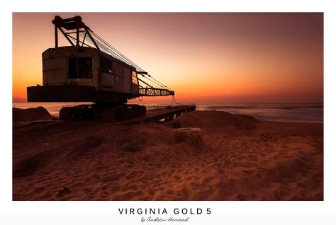Virginia Gold 5