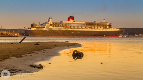 Queen Mary Afternoons