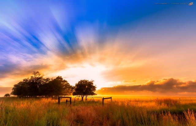 Waking in Heaven
