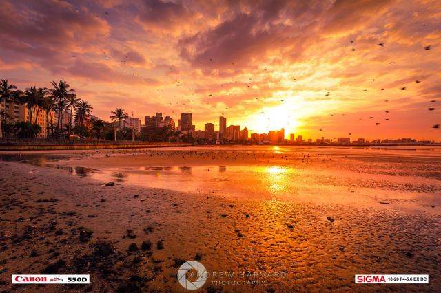 Love Durban (2) (Large)