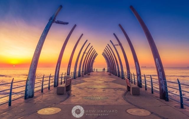 Whale Bone Pier 2015