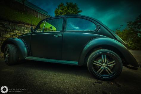 VW (Large)